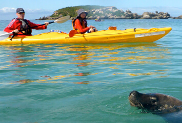 CAPRICORN SEA KAYAK ADVENTURES