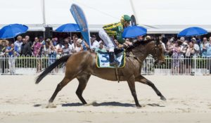 Horse and jockey ride the Rockingham Beach Cup